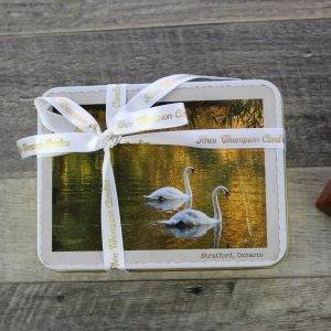 Small Swans Tin